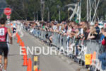 Crowds line the barriers during the run at the Escape…