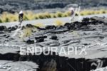 Athletes riding through the lava fields on the bike at…