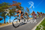 Chasing pack at the 2013 Vila Velha ITU Triathlon Pan…