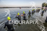 Pro Men swim start at the 2013 Ironman Muncie 70.3…