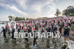 Age group athletes entering the water at the 2013 Ironman…
