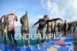 last preparations before the swim start of the 2014 Ironman…
