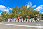 Elite women's pack at the 2014 ITU Grand Final Edmonton…