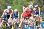 Javier Gomez leads the pack at the 2014 ITU Grand…