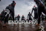 Athletes walk into the water before the start of the…