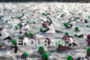 Competitors start the swim of the 2012 Ironman Lake Placid…